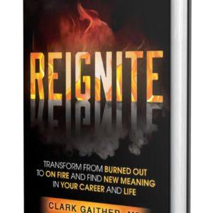 Reignite Book Cover