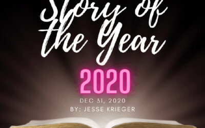 Story of the Year 2020