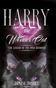 Harry The Wonder Cat