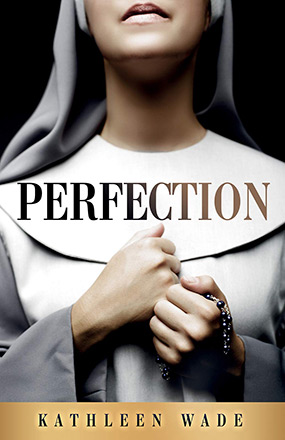 Perfection New Book Cover