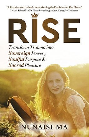 Rise New Book Cover